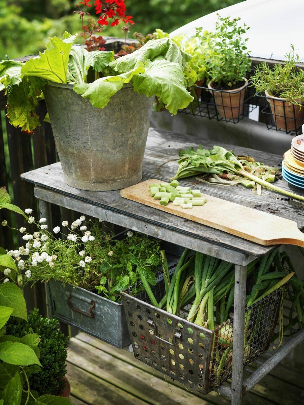Odla på balkongen – massor av inspiration