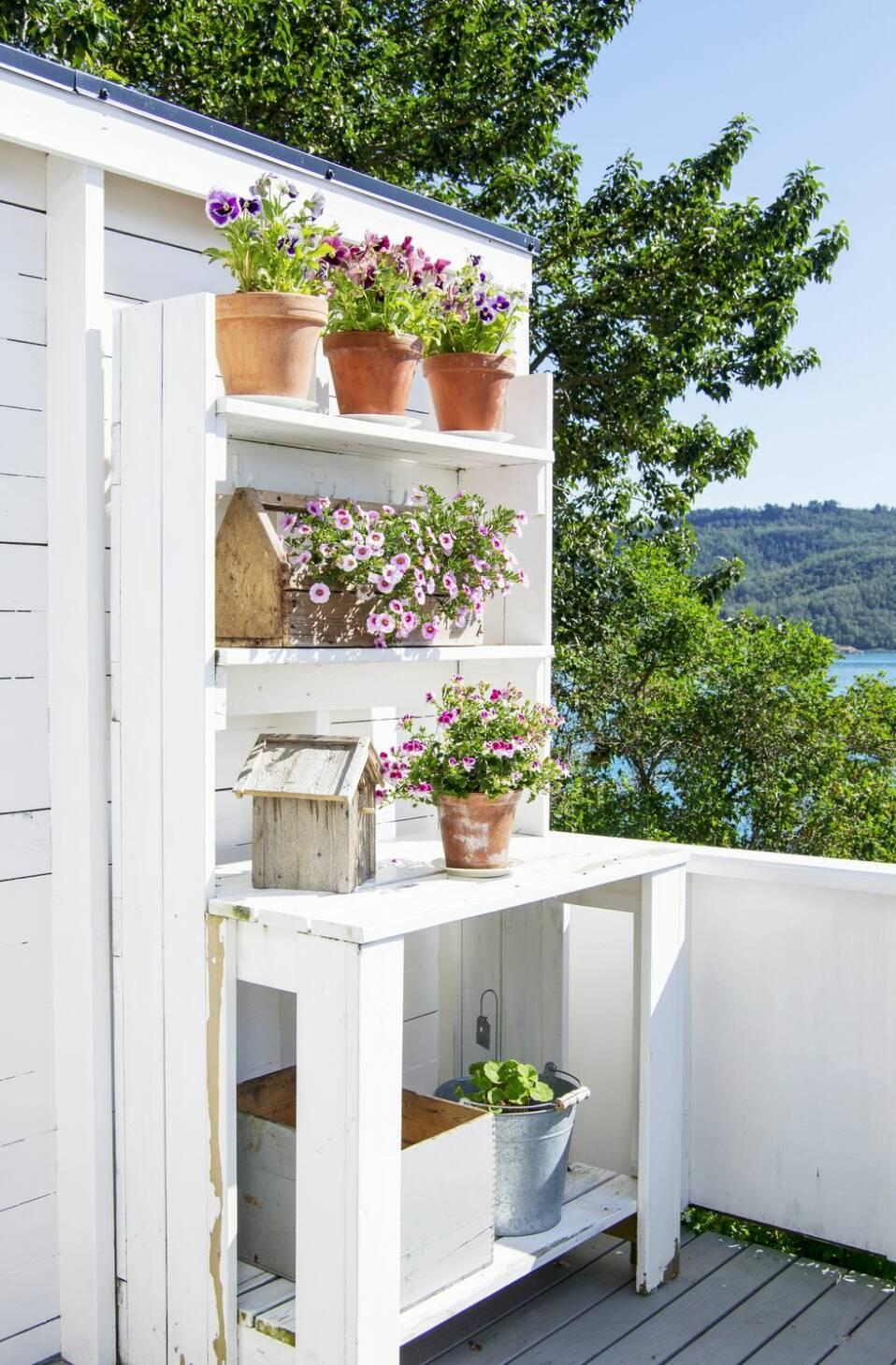 Så här skapar du din egen plats i solen i sommar