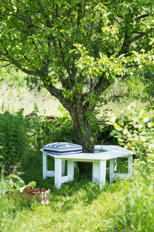 Bygg en bänk runt äppelträdet – sommarens skönaste sittplats