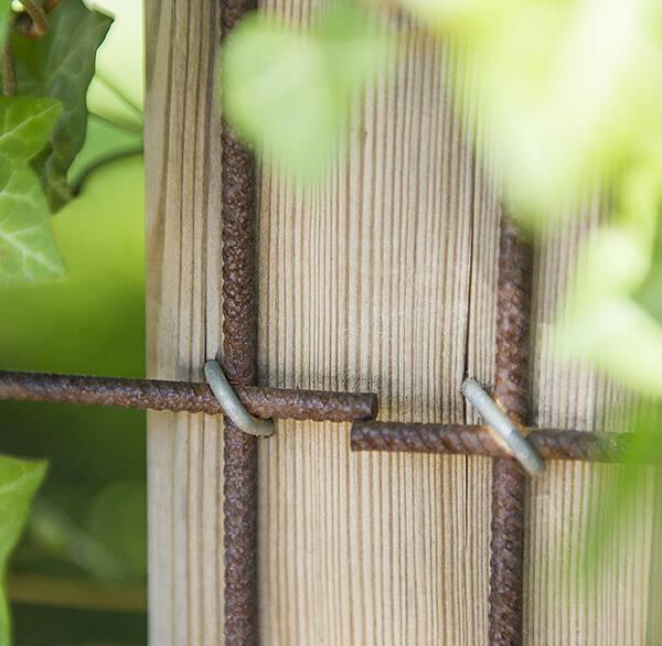 Låt staketet grönska
