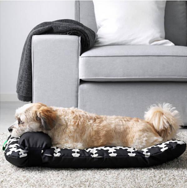 Äntligen börjar Ikea göra möbler för våra husdjur