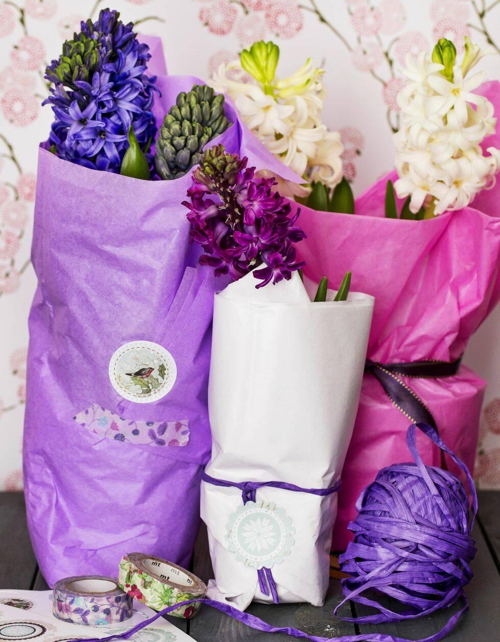 4 vackra arrangemang med hyacinter att fixa inför jul