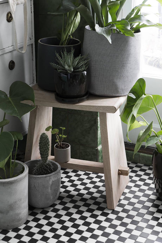 Gröna växter tar plats i inredningen hos Granit i vår