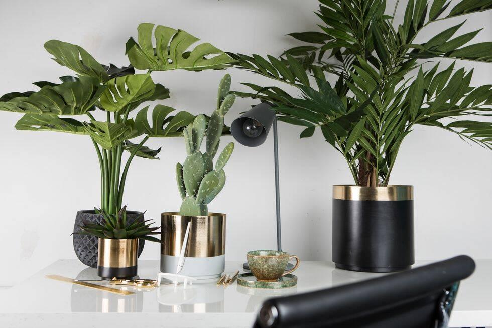 Konstgjorda växter – lösningen för dig som saknar gröna fingrar?