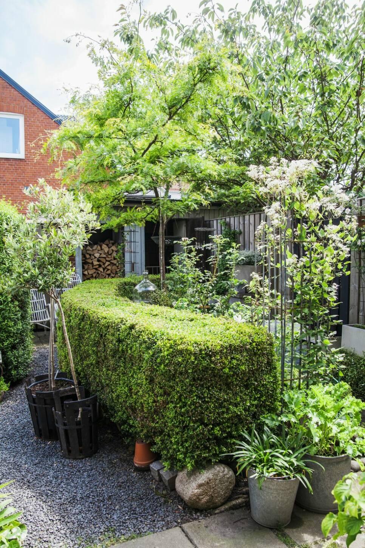 7 tips på hur du skapar din drömträdgård på liten yta