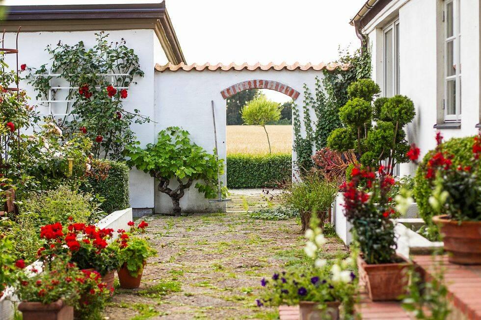 Drömträdgård: En doft av Medelhavet – på Österlen