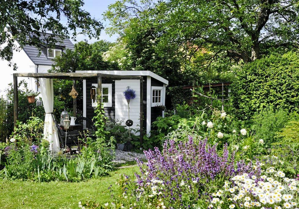 Så skapar du en trädgårdsdröm med rosor och klematis