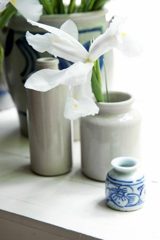 Vintervitt i vas – 7 tips för extra vackra blomarrangemang
