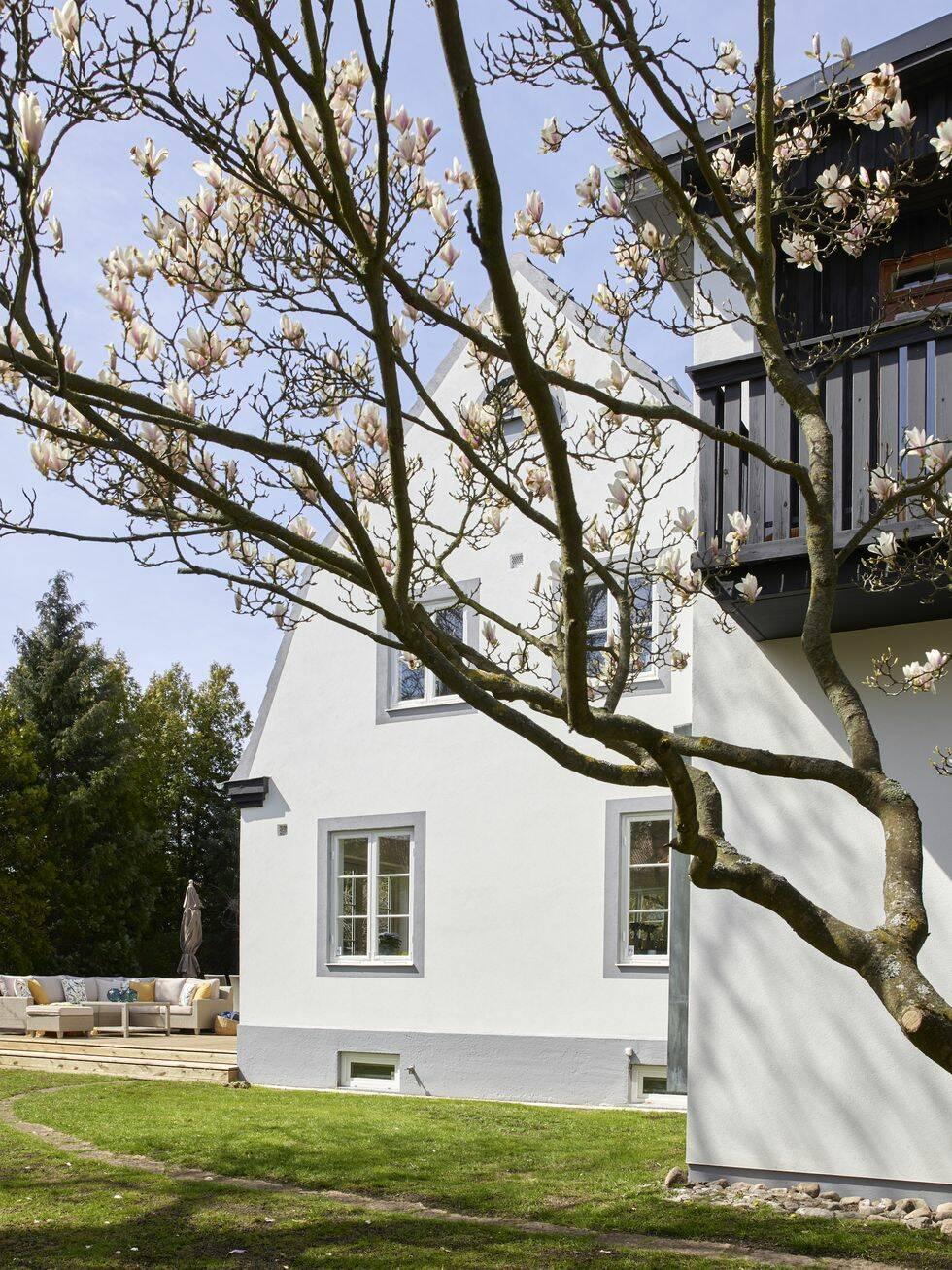 Vårens snyggaste hem – här mixas designklassiker med glamour