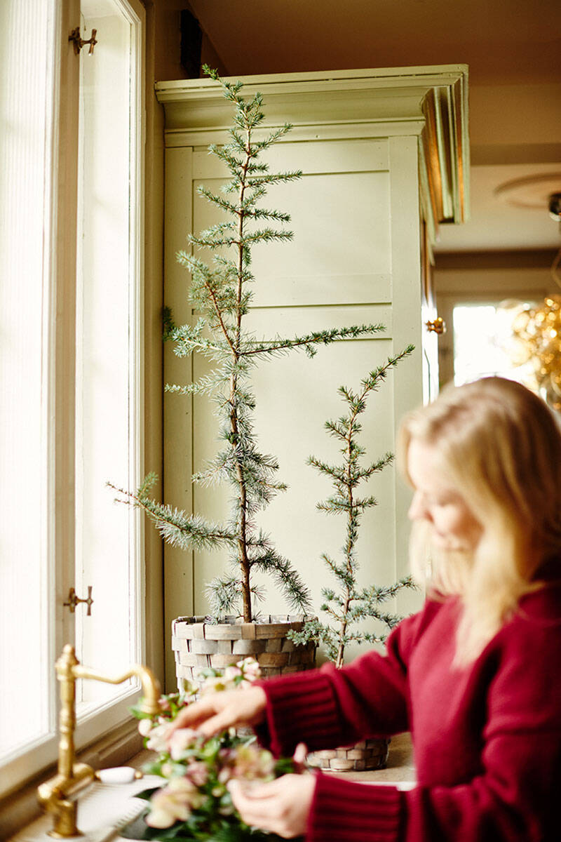 Frida Fahrman och Lisa Bengtsson tolkar julen med växter – se bilderna här!