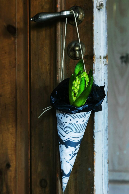 Enkelt adventspyssel: Fina tapetstruten för hyacinter