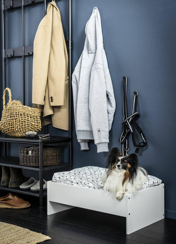 Nu kan du köpa möbler till ditt husdjur på Ikea