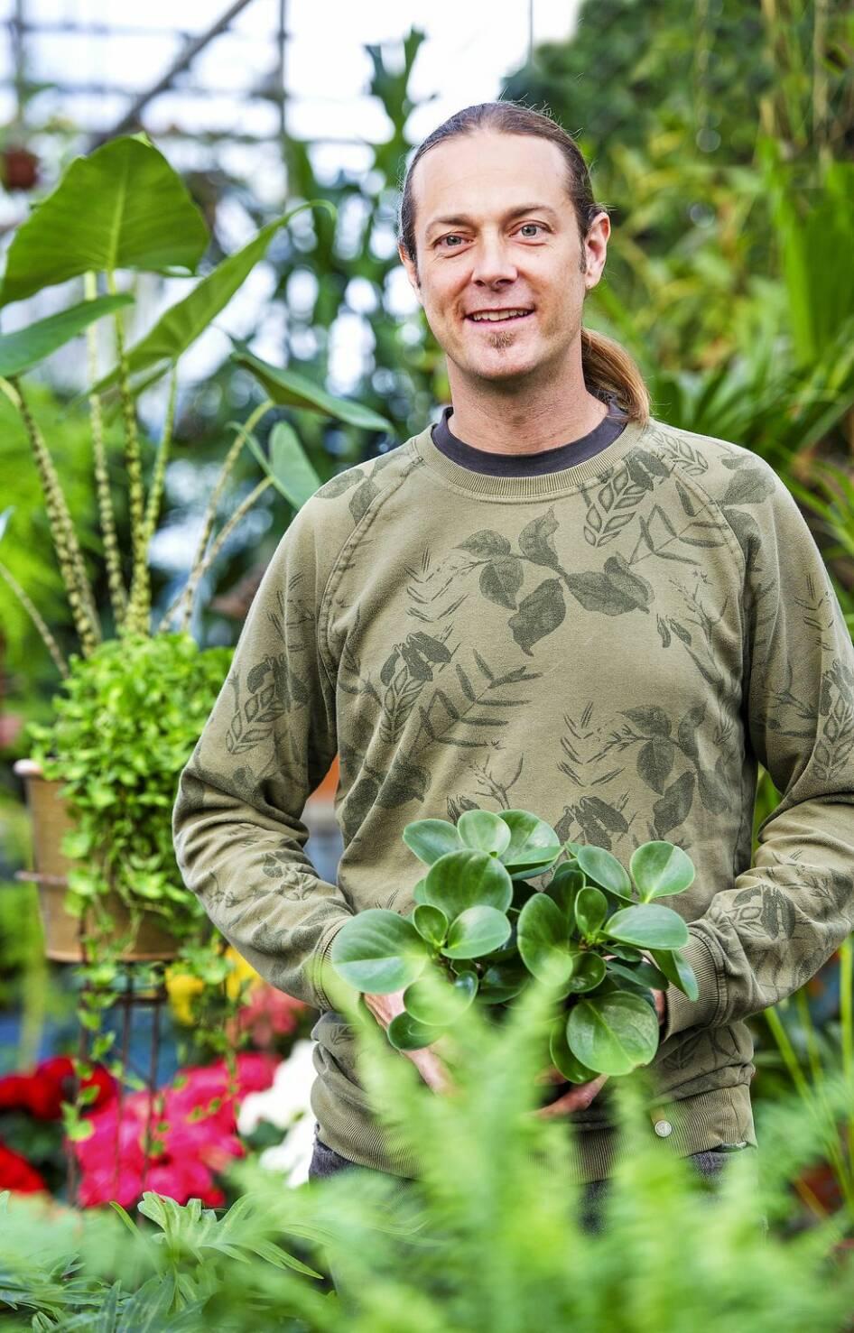 Kika in i växthuset som bjuder på djungelkänsla mitt i vintern
