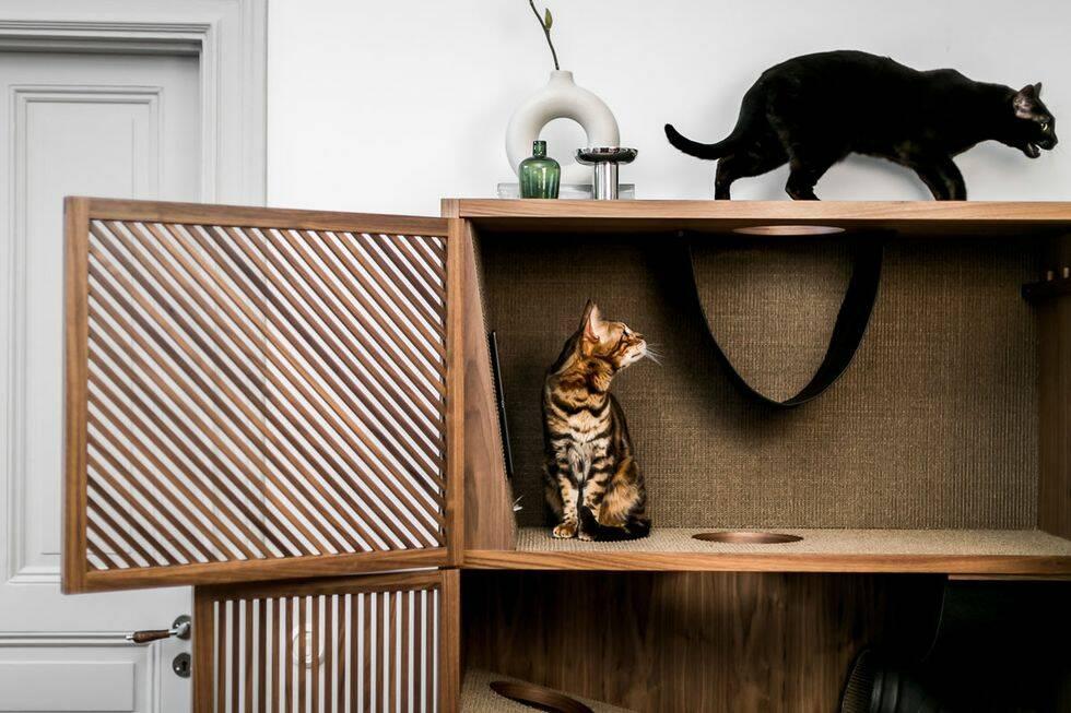 Här är designmöbeln du vill att katten ska klösa på