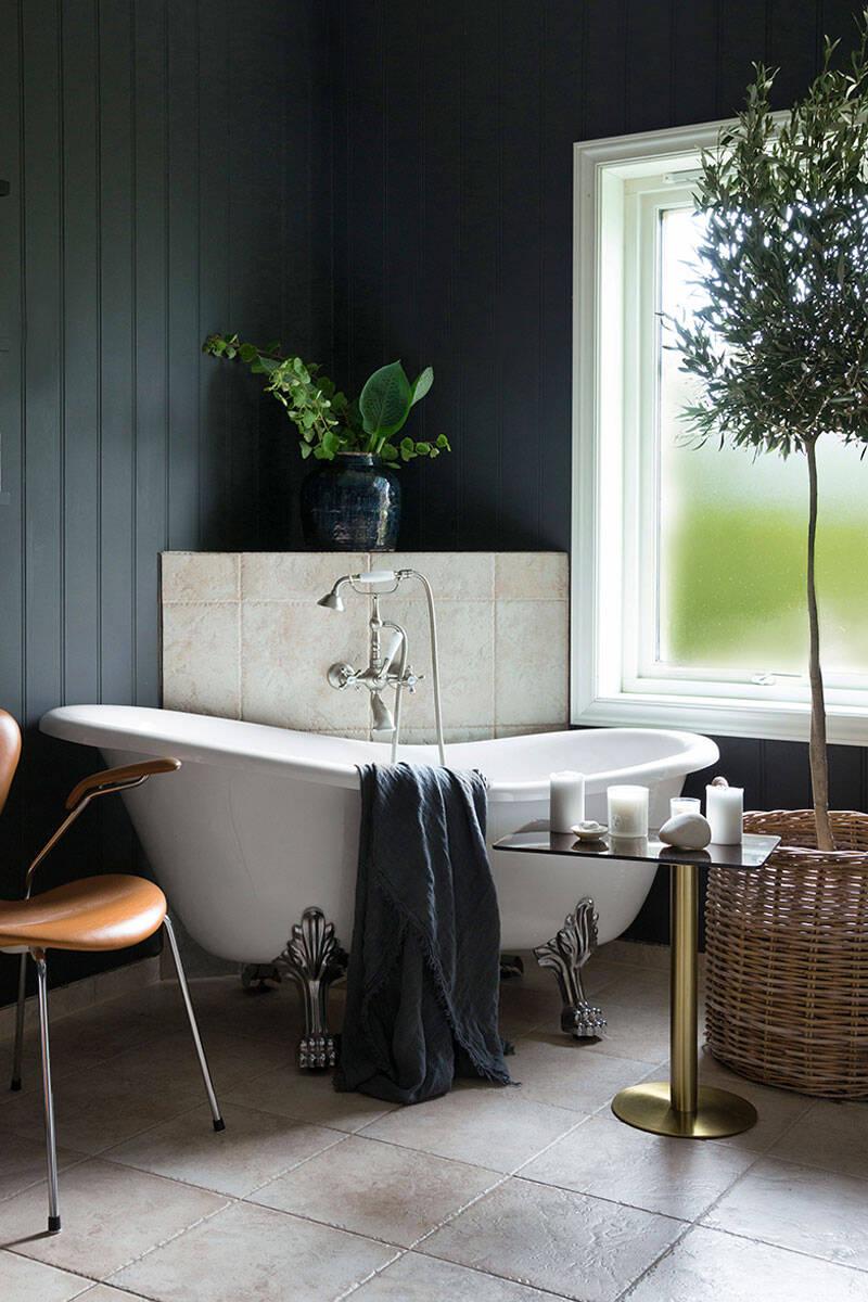 Så inreder du med växter – 5 tips för ett grönare hem