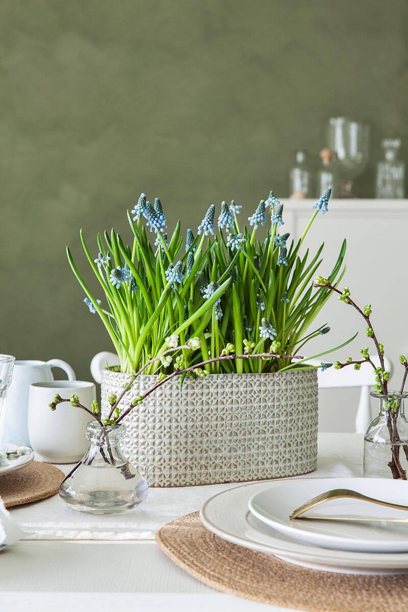 5 tips på hur du inreder med säsongens blommor och kvistar
