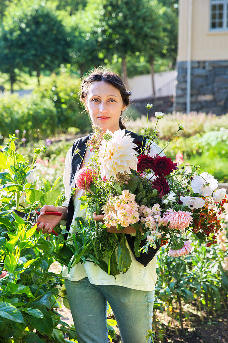 Hus & Hem Trädgård: Så odlar du en hållbar fredagsbukett
