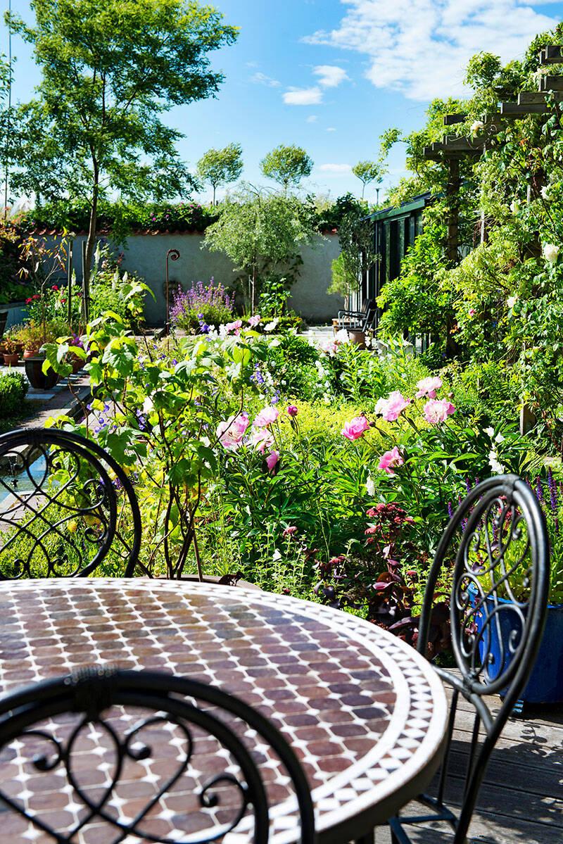 Så skapar du en trädgård med medelhavskänsla –5 tips