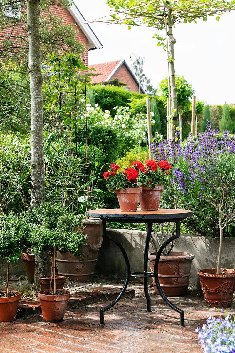 Skapa en italiensk trädgård – steg för steg