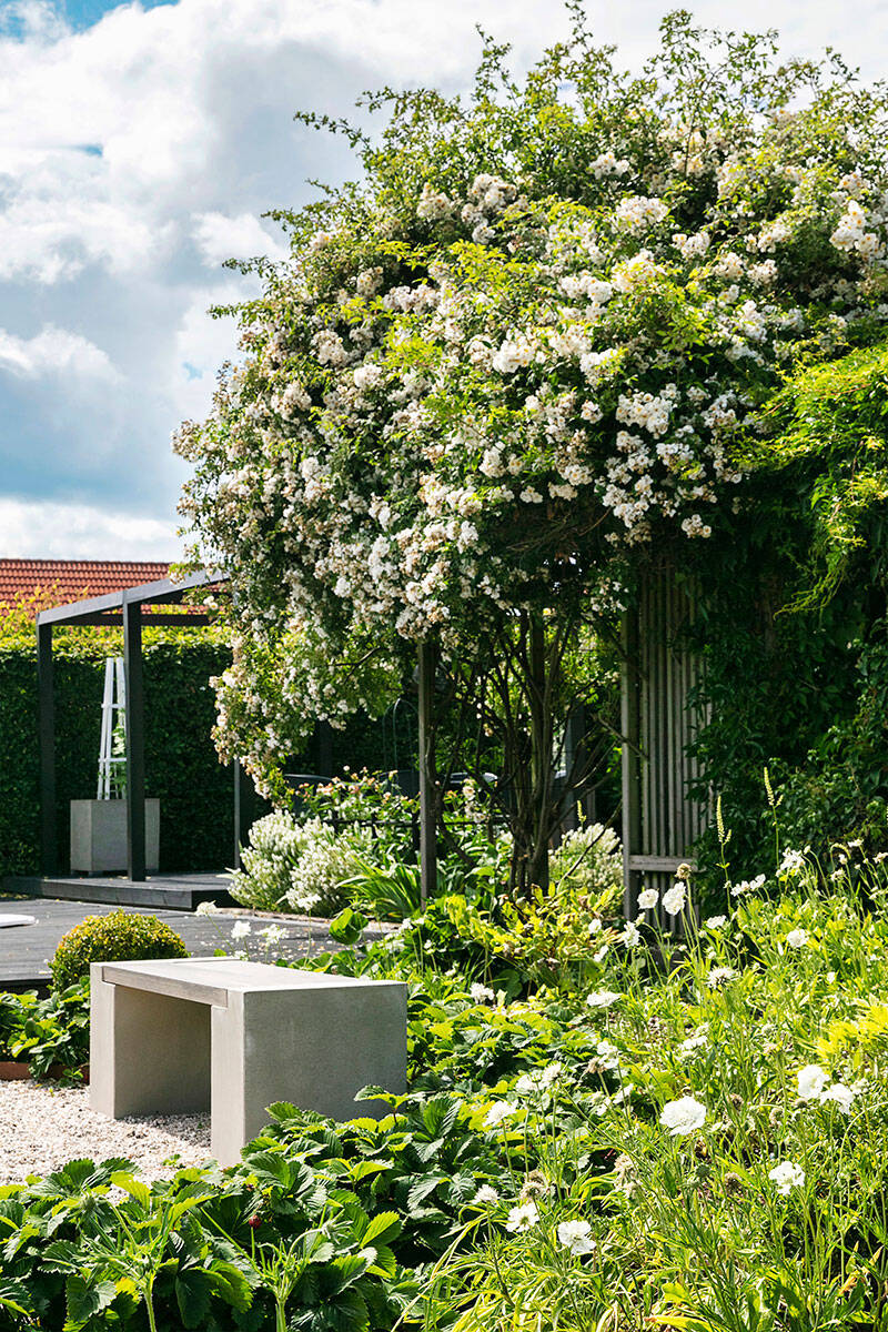 Skapa gröna rum i trädgården –tips och saker att tänka på