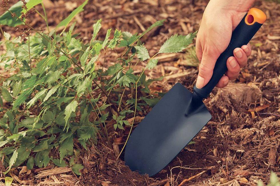 10 smarta trädgårdsredskap och verktyg