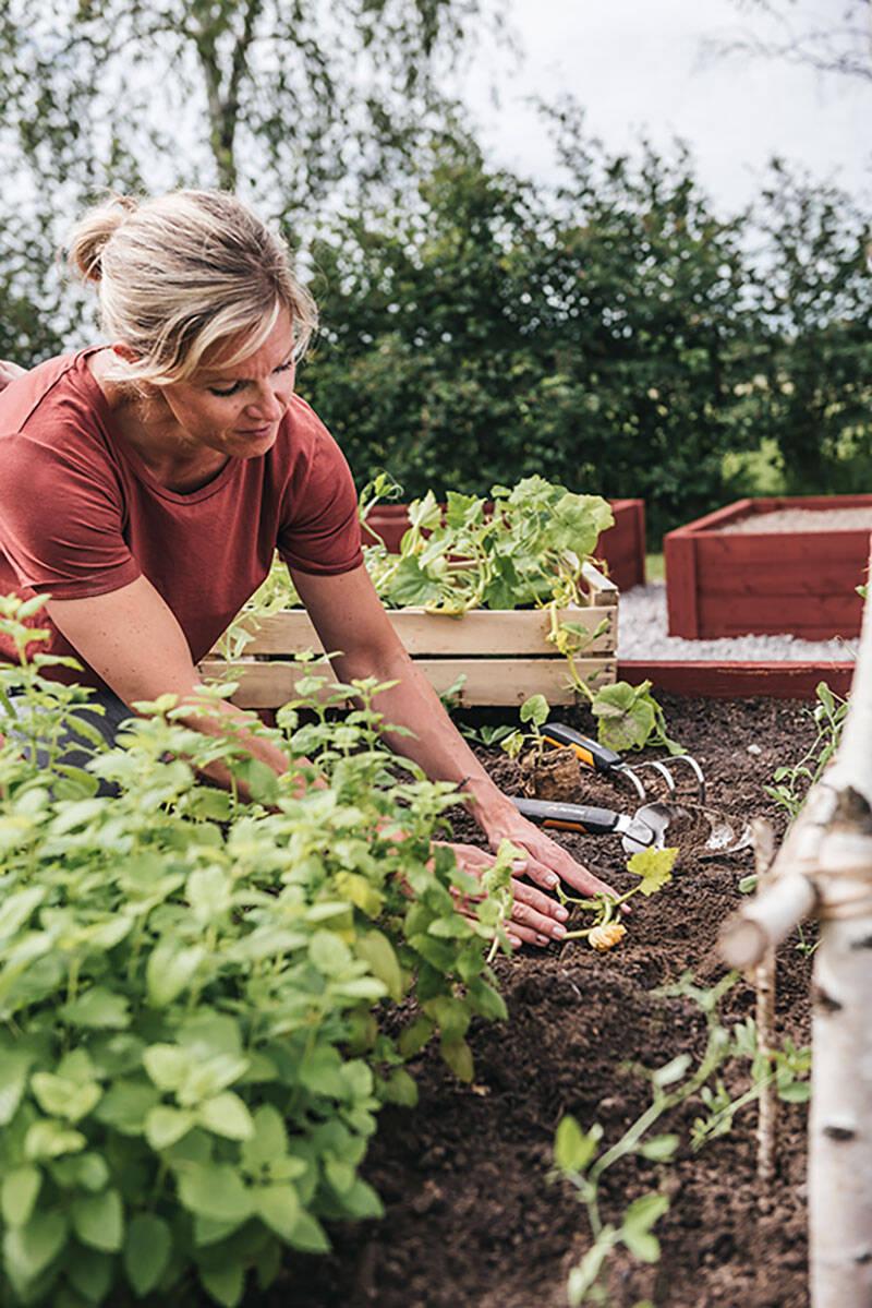 6 trädgårdsaktiviteter vi älskar – och sysslorna vi undviker