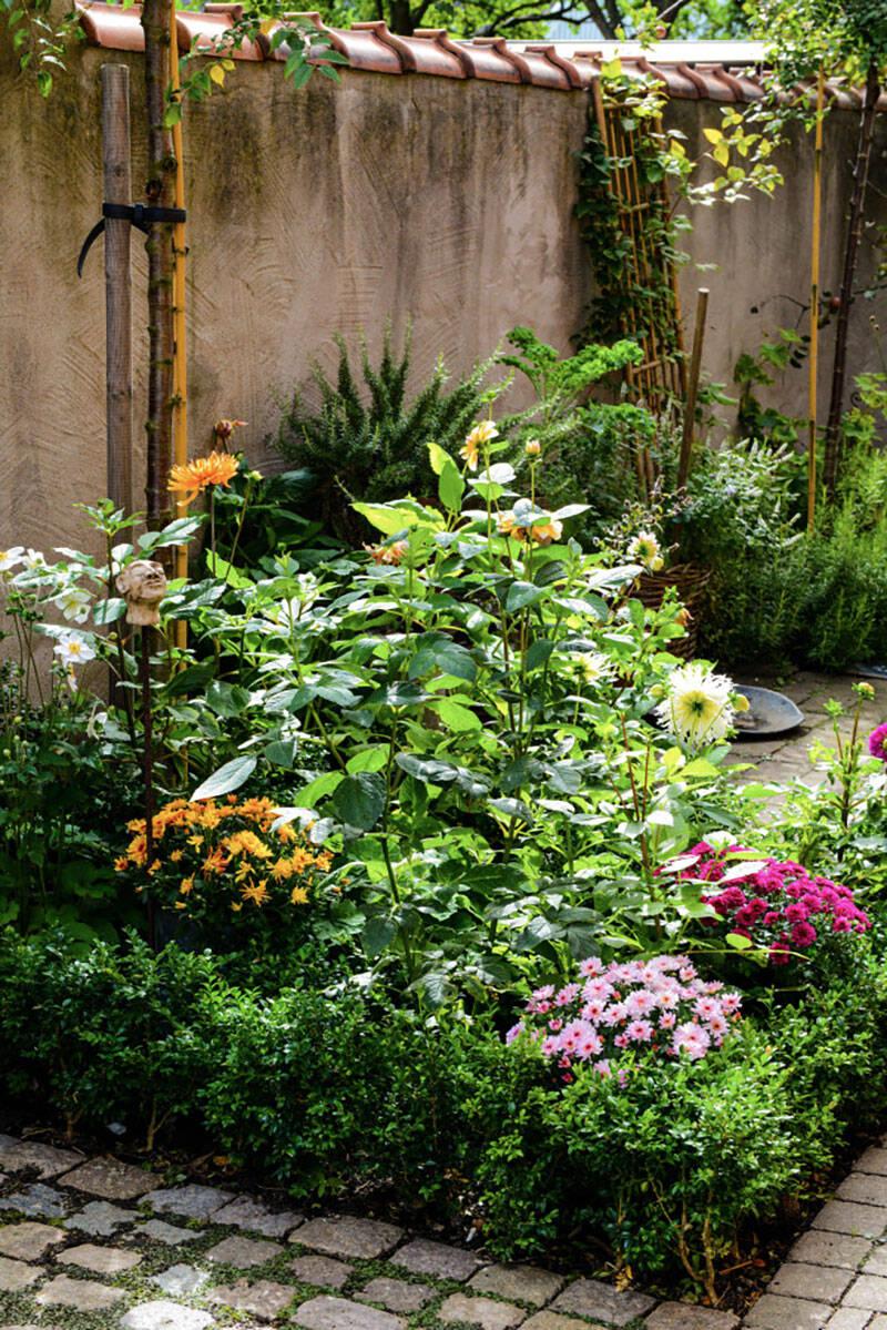 Så tar du hand om trädgården i höst