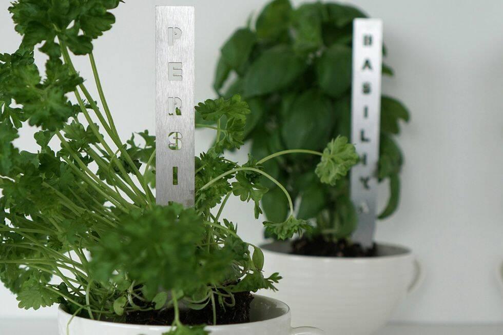 12 smarta produkter för inomhusodling