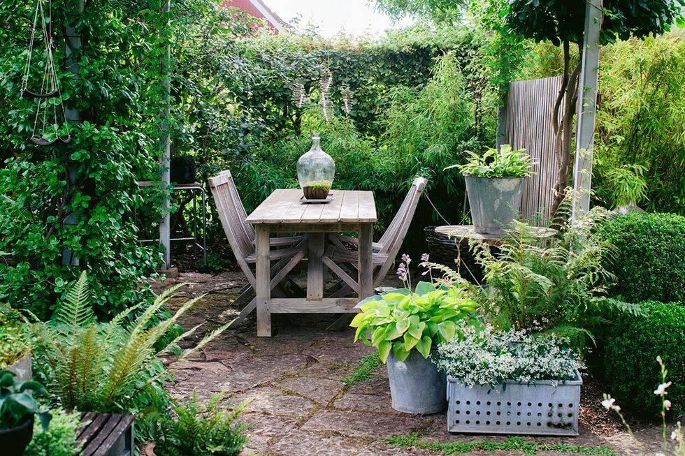 Så skapar du vackra och grönskande rum i trädgården