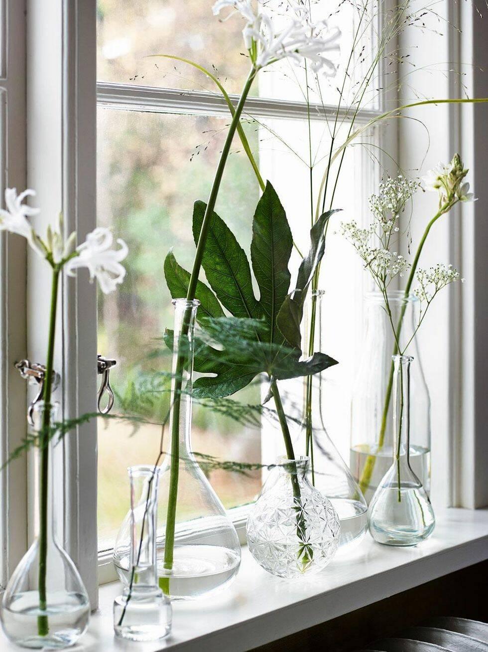 Grönt ljus – nu tar växterna plats i inredningen