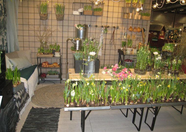 Vårtecken på trädgårdsmässan i Älvsjö