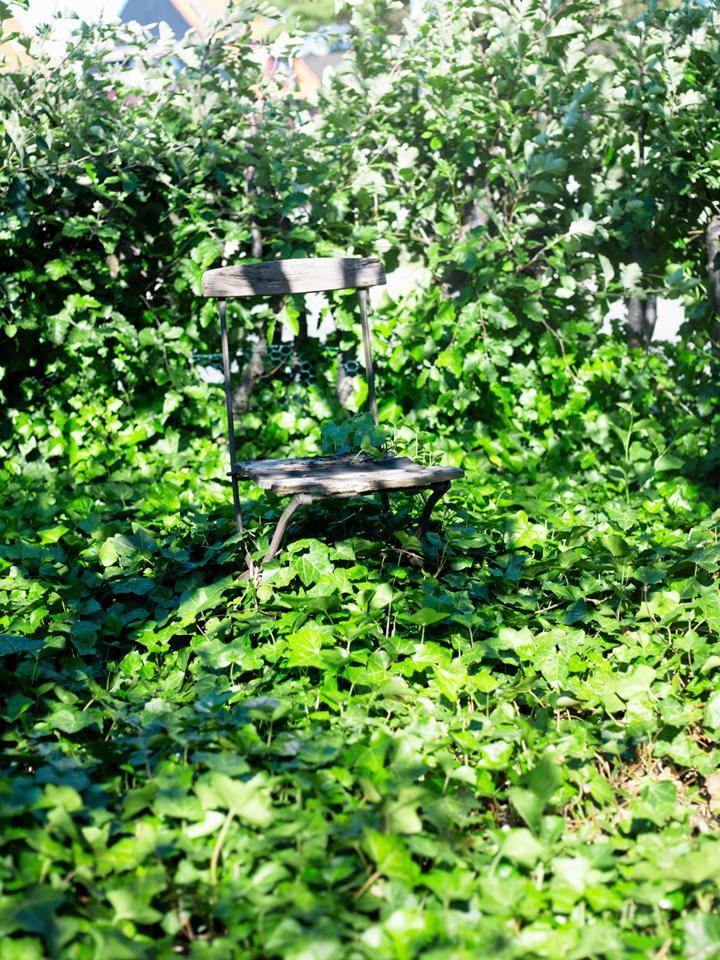Trädgårdsskolan del 1: Trädgårdens golv