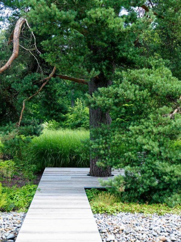 Trädgårdsskolan del 4: Trädgårdens tak