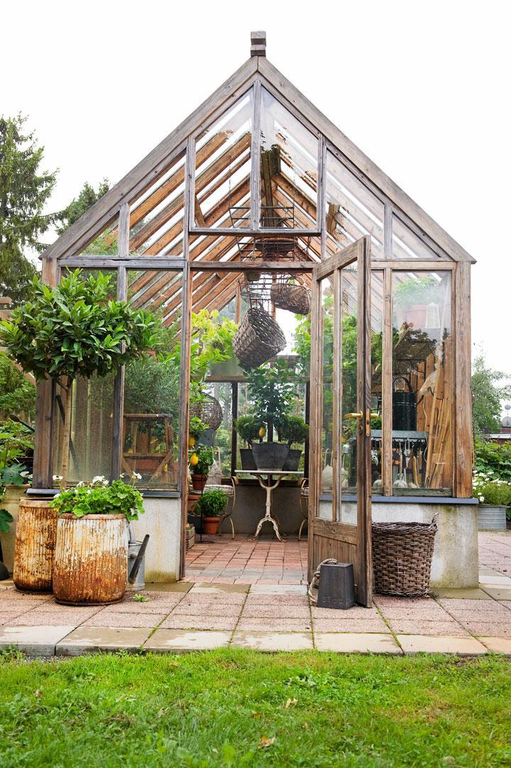 Växthus med en doft av medelhavet
