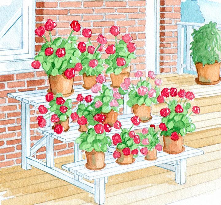 Bygg en trappa till blommorna