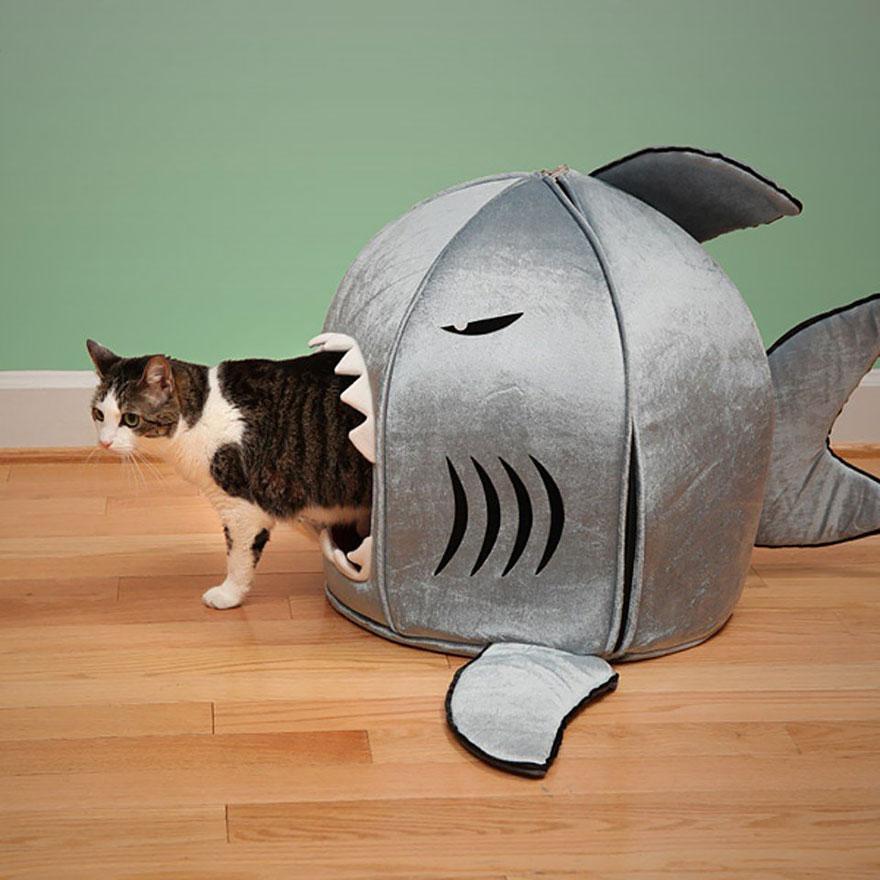 10 möbler som kommer få din katt att älska dig lite extra