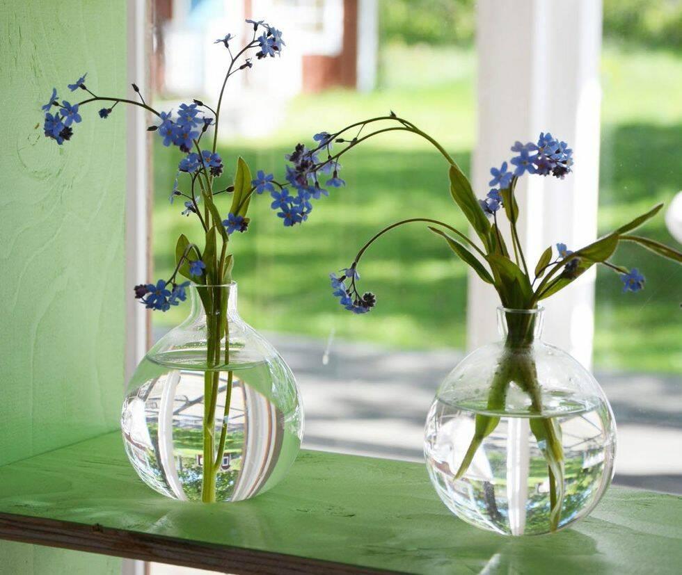 Gör det själv: Växtskåp till fönsterbrädan