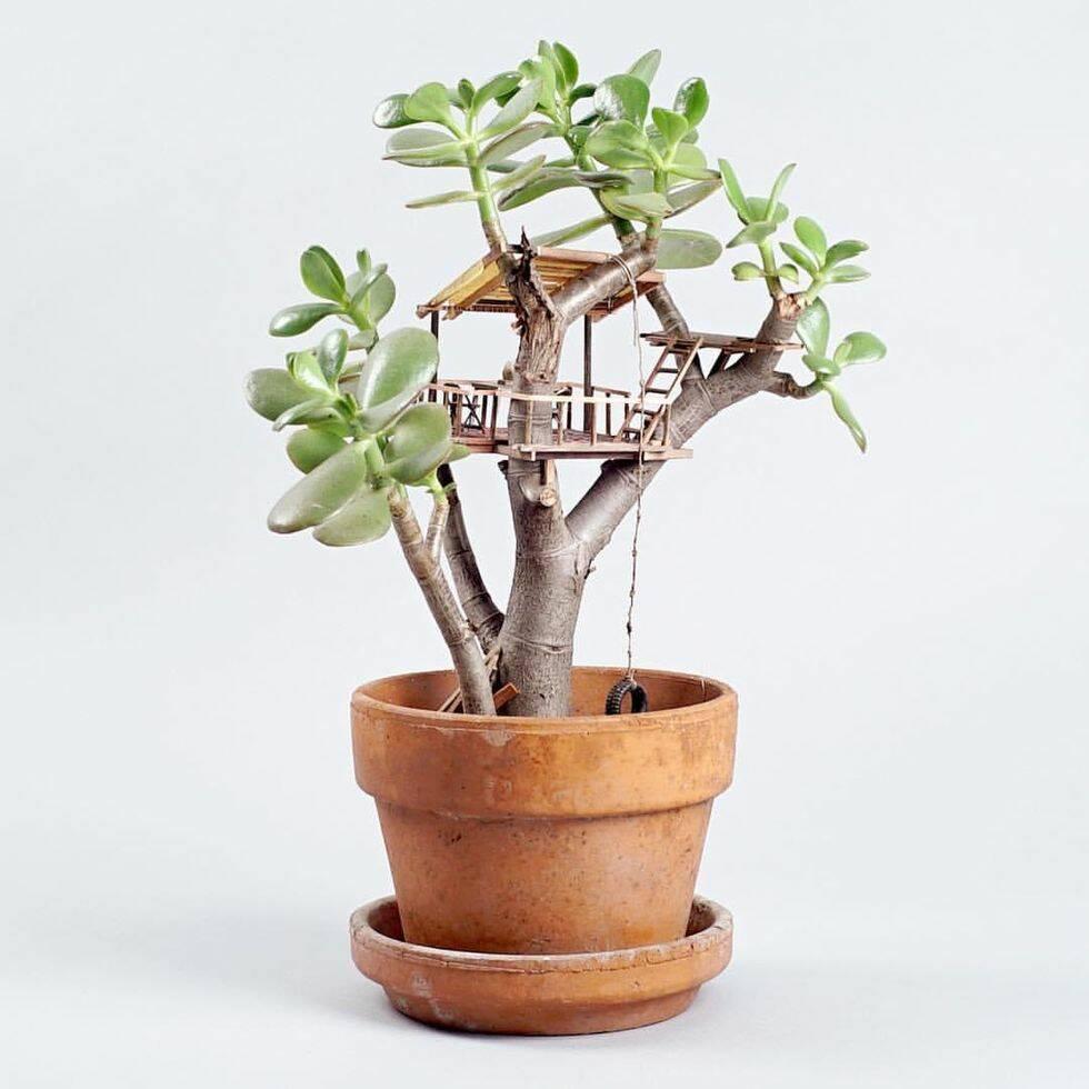 De här trädhusen i miniatyr är det gulligaste vi sett på länge