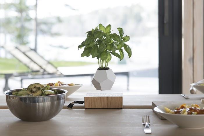 Svenska uppfinningen får dina växter att sväva