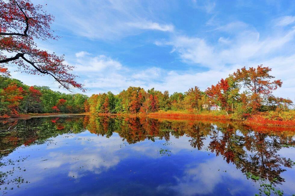 12 bilder som bevisar att hösten är den vackraste årstiden