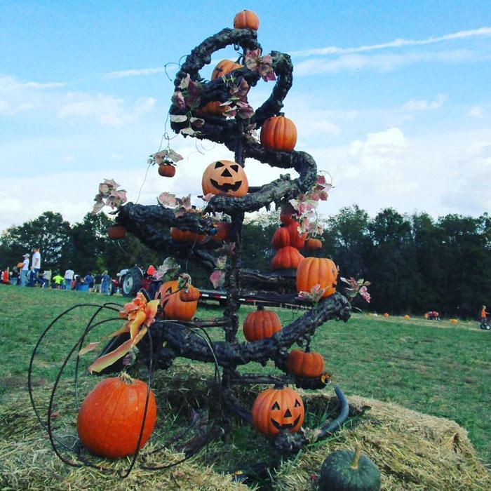 Trenden med Halloweengranar kombinerar två av våra favorithögtider
