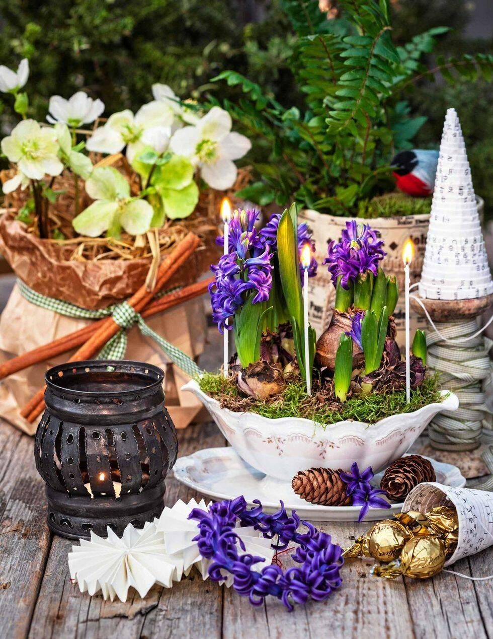 Älskade julblommor: 3 stämningsfulla arrangemang för ditt bord