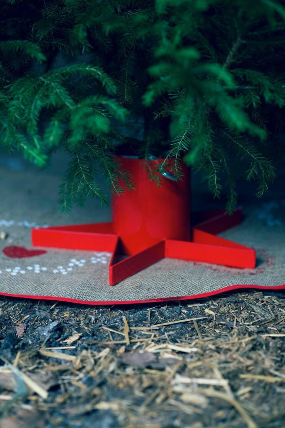 5 steg till den perfekta julgranen – experten tipsar