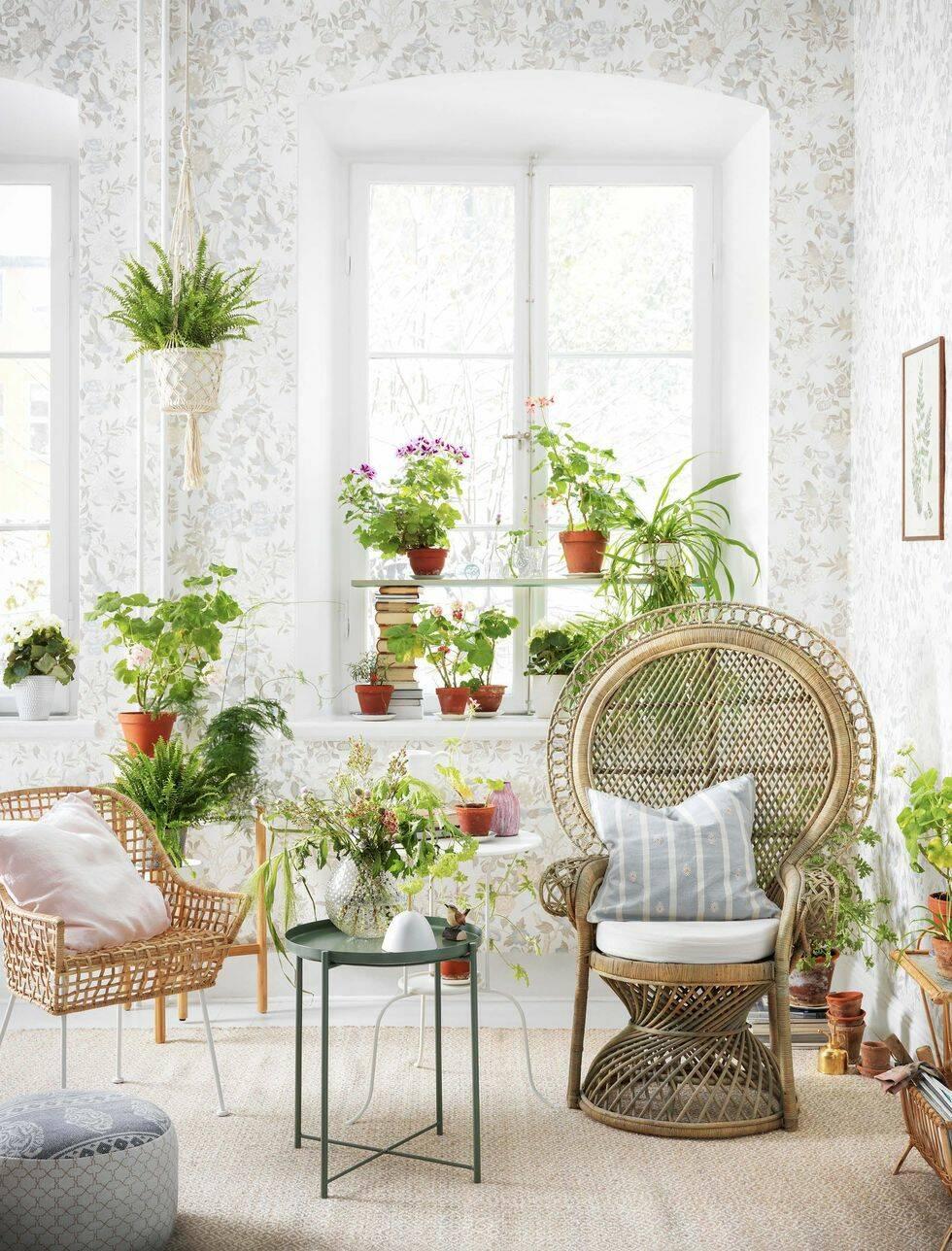 Våräng, djungel eller prärie – välj växter utifrån den skötselnivå som passar dig