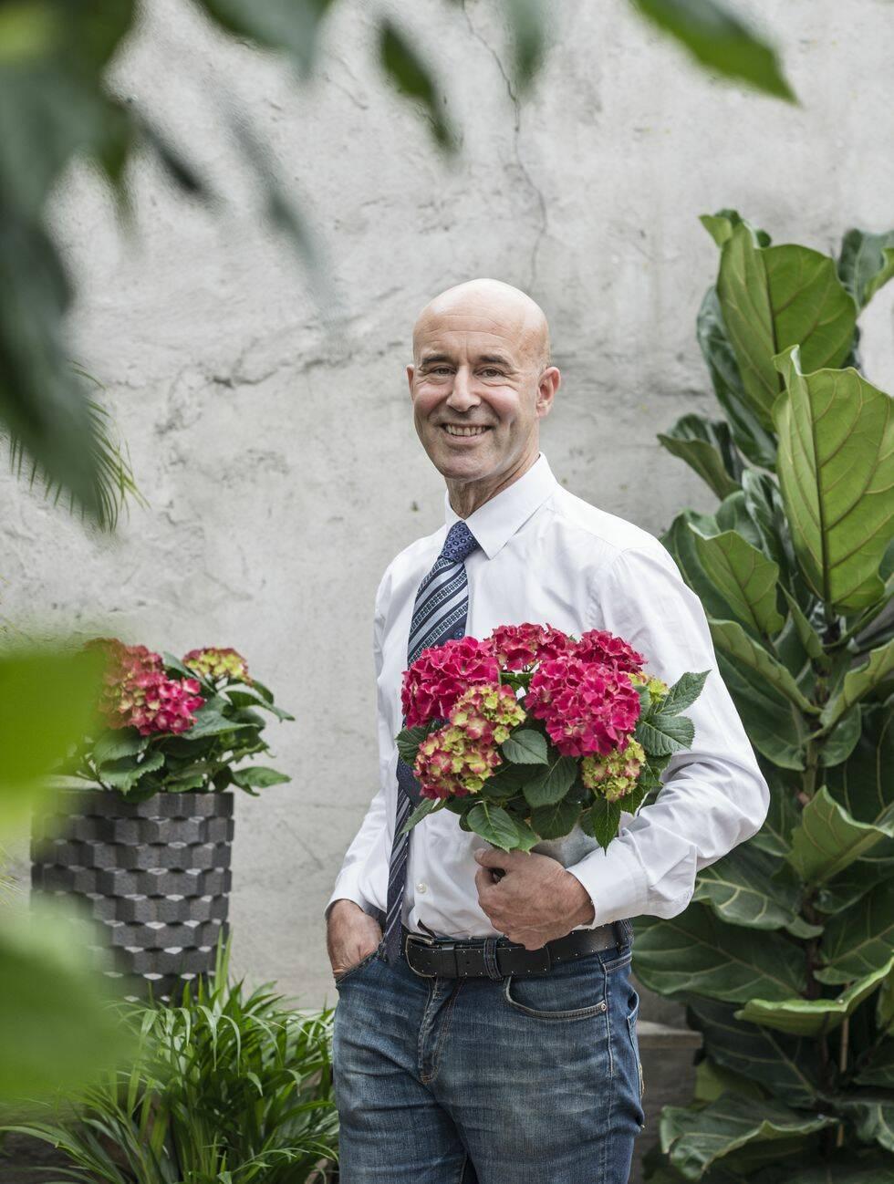 Så lyckas du med hortensian – Mark Levengoods 5 bästa tips